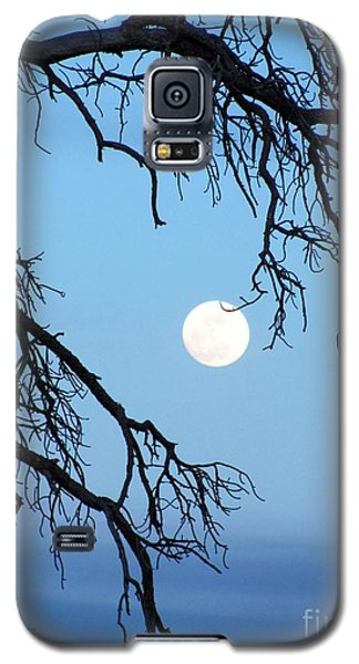 Full Moon Blue Sky Galaxy S5 Case