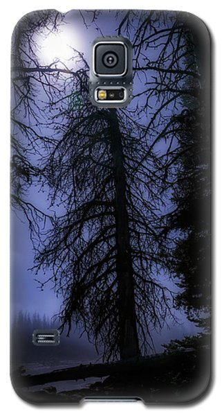 Full Moon In The Woods Galaxy S5 Case