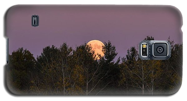 Full Moon Over Orchard Galaxy S5 Case