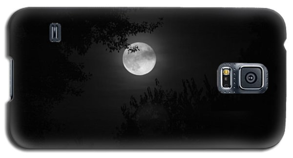 Full Moon With Branches Galaxy S5 Case