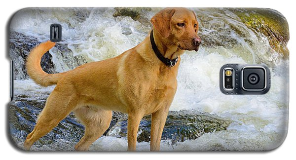 Galaxy S5 Case featuring the photograph Fun At The Creek by Kathy King