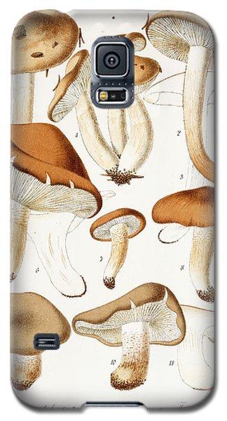 Fungi Galaxy S5 Case by Jean-Baptiste Barla