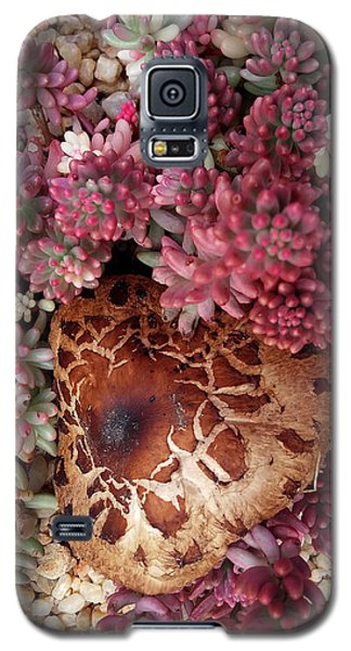 Fungus And Succulents Galaxy S5 Case