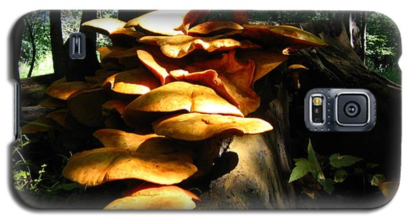 Galaxy S5 Case featuring the photograph Fungus Colony 23 by Maciek Froncisz