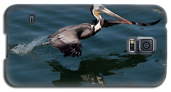 Galaxy S5 Case featuring the photograph Funky Wings by Rod Wiens