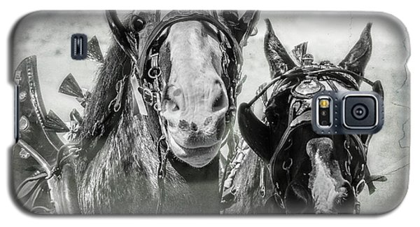 Galaxy S5 Case featuring the photograph Funny Draft Horses by Mary Hone