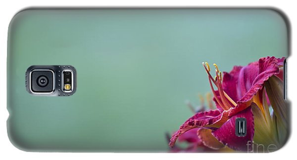Galaxy S5 Case featuring the photograph Fuchsia In Bloom by Andrea Silies