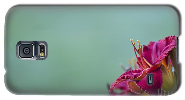 Fuchsia In Bloom Galaxy S5 Case