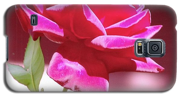 Fuschia Rose Galaxy S5 Case by Rod Ismay