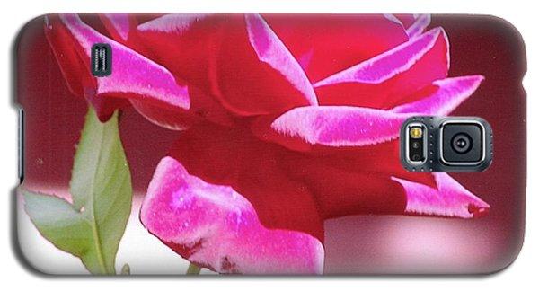 Fuschia Rose Galaxy S5 Case