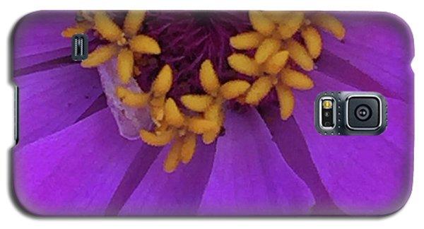 Fuschia Zinnia Galaxy S5 Case