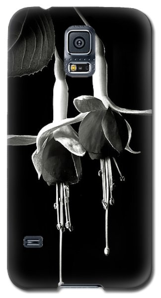 Fuschias In Black And White Galaxy S5 Case