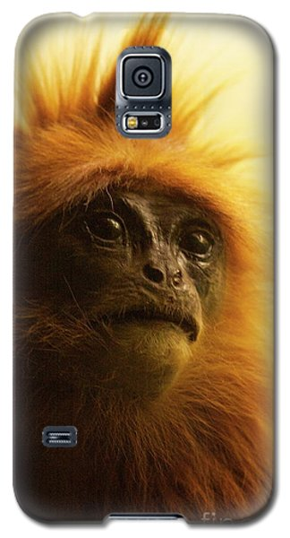 Fuzzhead Galaxy S5 Case by Xn Tyler