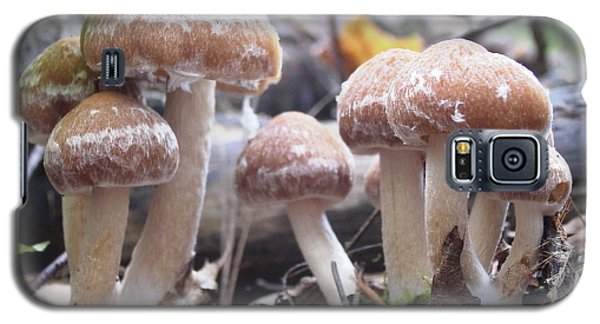 Fuzzy Fungi Galaxy S5 Case