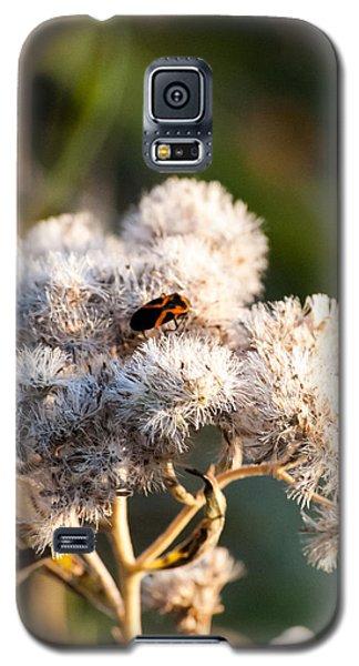Fuzzy With Bug Galaxy S5 Case