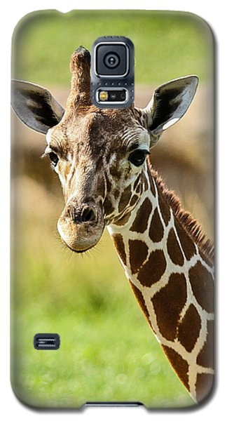 Galaxy S5 Case featuring the photograph G Is For Giraffe by John Haldane