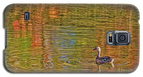Galaxy S5 Case featuring the photograph Gadwall In Fall by Gary Holmes