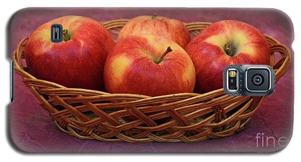 Gala Apple Basket Galaxy S5 Case