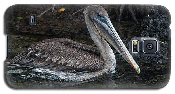 Galapagos Pelican Galaxy S5 Case