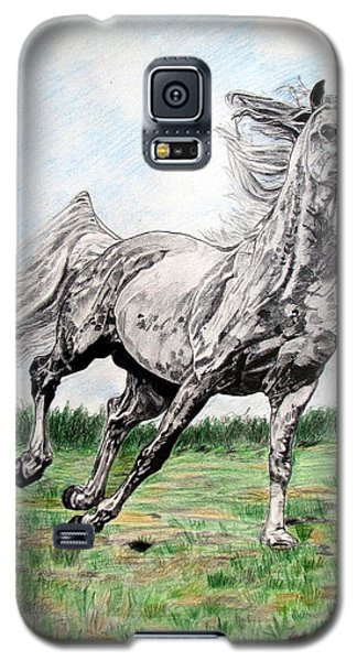 Galaxy S5 Case featuring the drawing Galloping Arab Horse by Melita Safran