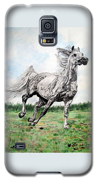 Galloping Arab Horse Galaxy S5 Case by Melita Safran