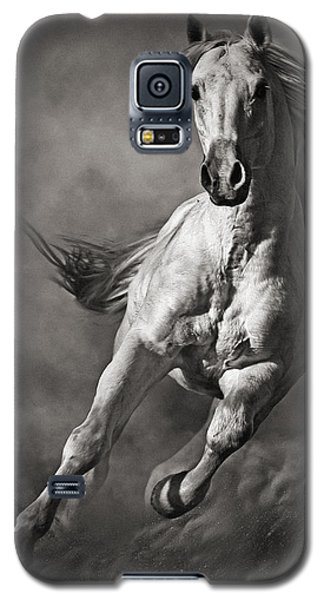 Galloping White Horse In Dust Galaxy S5 Case