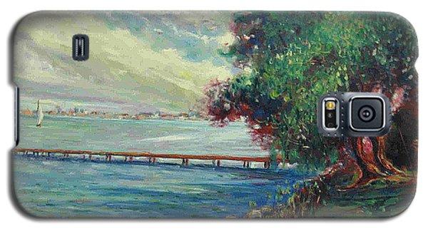 Galaxy S5 Case featuring the painting Garda Lake -lago Garda by Walter Casaravilla