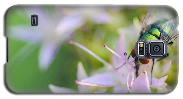 Garden Brunch Galaxy S5 Case
