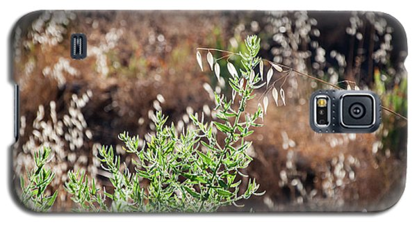 Garden Contre Jour 2 Galaxy S5 Case