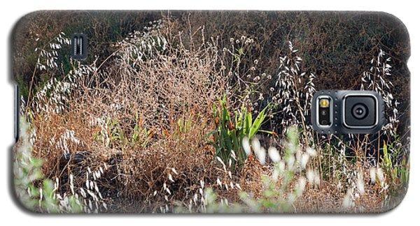 Garden Contre Jour Galaxy S5 Case
