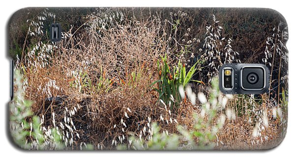 Garden Contre Jour Galaxy S5 Case