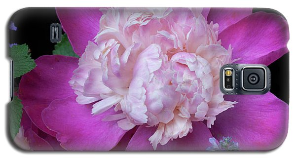 Garden Flowers Galaxy S5 Case