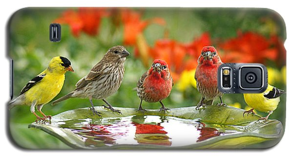 Garden Party Galaxy S5 Case by Bill Pevlor