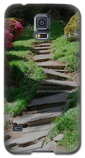 Galaxy S5 Case featuring the photograph Garden Path by Linda Mesibov