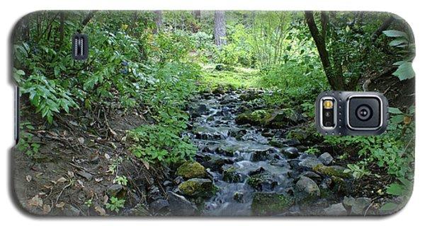 Galaxy S5 Case featuring the photograph Garden Springs Creek In Spokane by Ben Upham III
