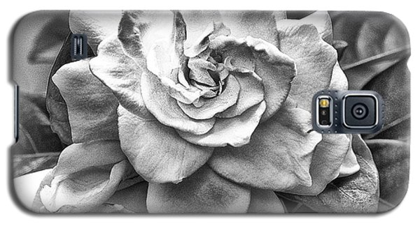 Gardenia Black And White Galaxy S5 Case by Barbara Middleton