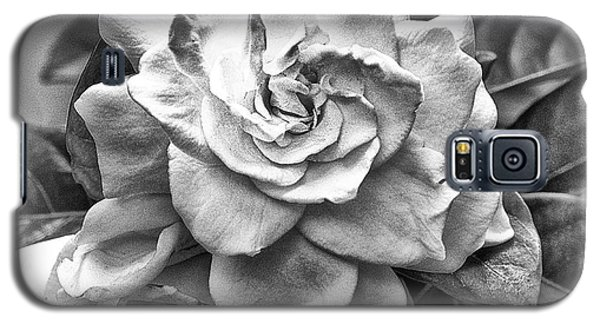 Gardenia Black And White Galaxy S5 Case