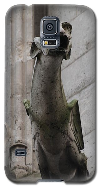 Gargoyle Notre Dame Galaxy S5 Case by Christopher Kirby