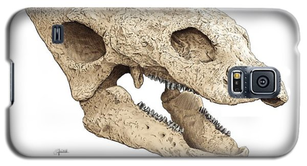 Gastonia Burgei Skull Galaxy S5 Case