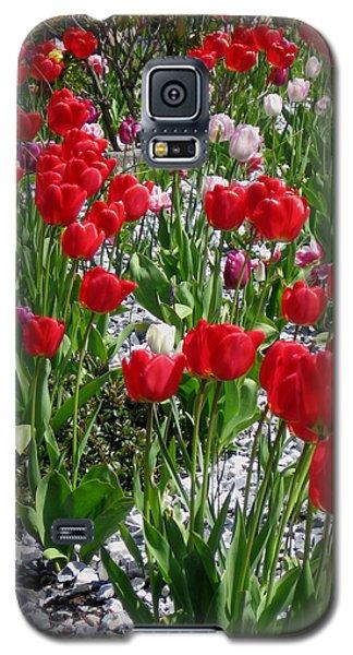 Gathering Of Joy Galaxy S5 Case