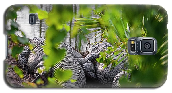 Gator Love Galaxy S5 Case by Josy Cue