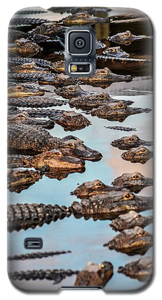 Gator Pack Galaxy S5 Case by Josy Cue