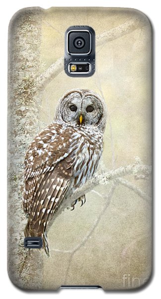 Guardian Of The Woods II Galaxy S5 Case