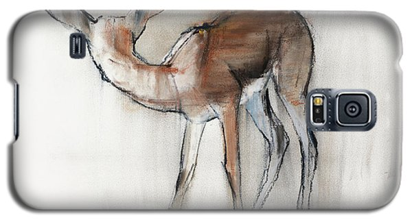 Gazelle Fawn  Arabian Gazelle Galaxy S5 Case by Mark Adlington