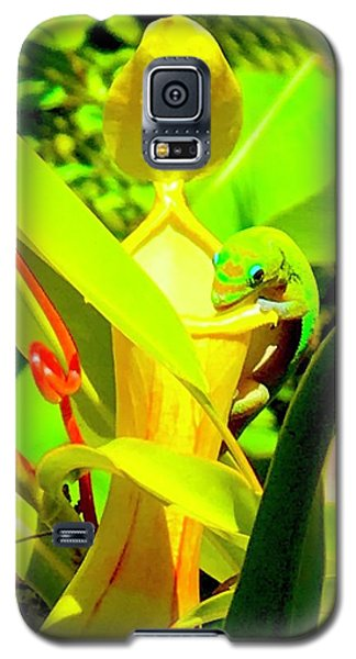 Gecko On Mosquito Catcher Orchid Galaxy S5 Case