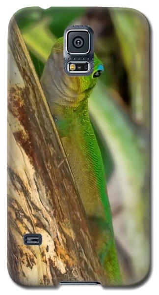 Gecko Up Close Galaxy S5 Case