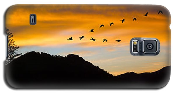 Galaxy S5 Case featuring the photograph Geese At Sunrise by Shane Bechler