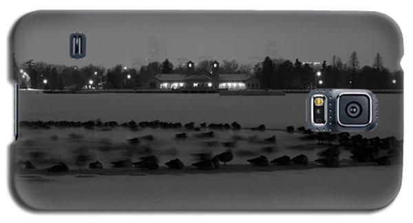 Geese In Frozen Lake Galaxy S5 Case
