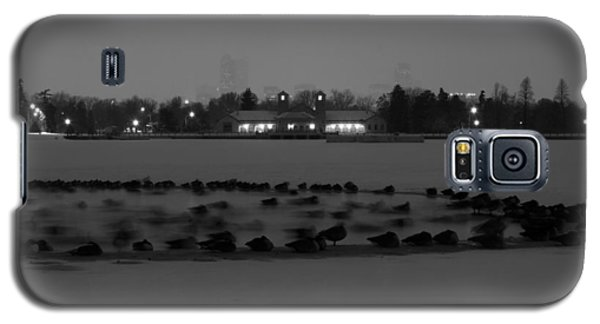 Geese In Frozen Lake Galaxy S5 Case