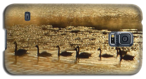 Geese On Golden Pond Galaxy S5 Case